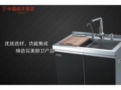 厂家集成水槽十大品牌加盟哪个-优质扬子集成水槽供应