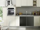 帅沃集成水槽 304不锈钢 厨房多功能配套一体水槽 G1