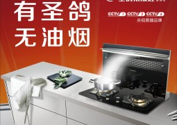 圣鸽集成灶最新产品装修效果图展示
