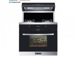 金帝集成灶v900Z蒸烤一体机