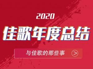 佳歌集成灶2020年度报告PC版图片